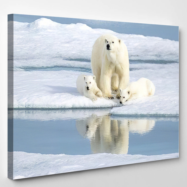 Mother Bear Keeping Eye Her Two 1 - Bear Animals Canvas Wall Decor