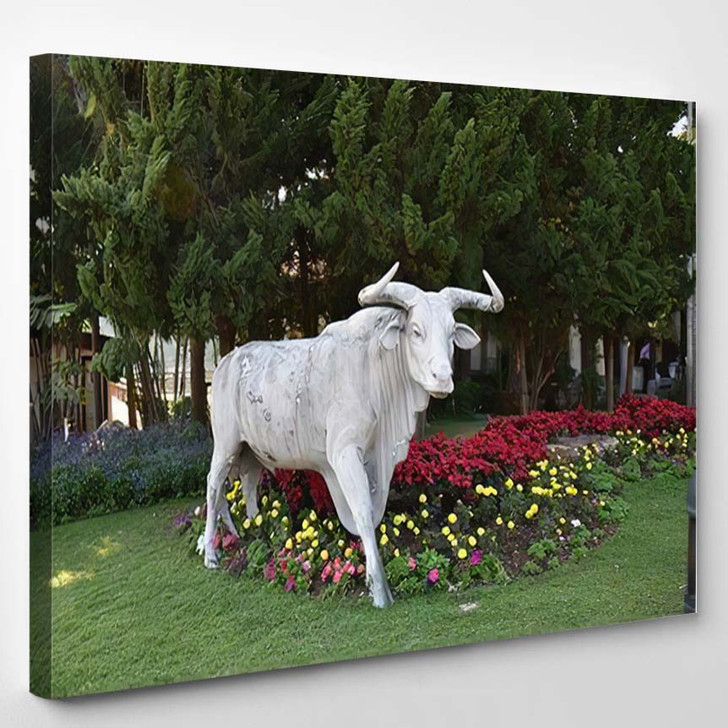 Single White Male Bison Statue Strong - Bison Animals Canvas Wall Decor