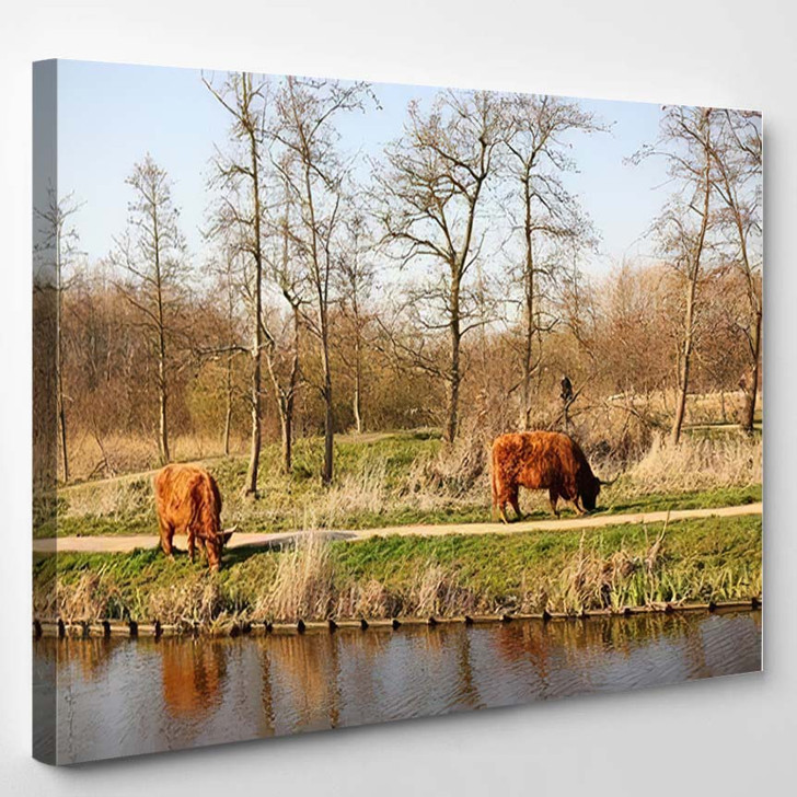 Two Bisons Park Near Water Eating - Bison Animals Canvas Wall Decor