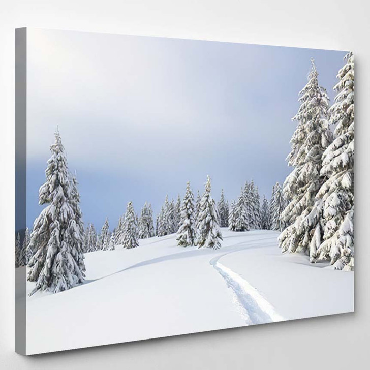 Winter Landscape Trees Snowdrifts Lawn Covered - Christmas Canvas Wall Decor
