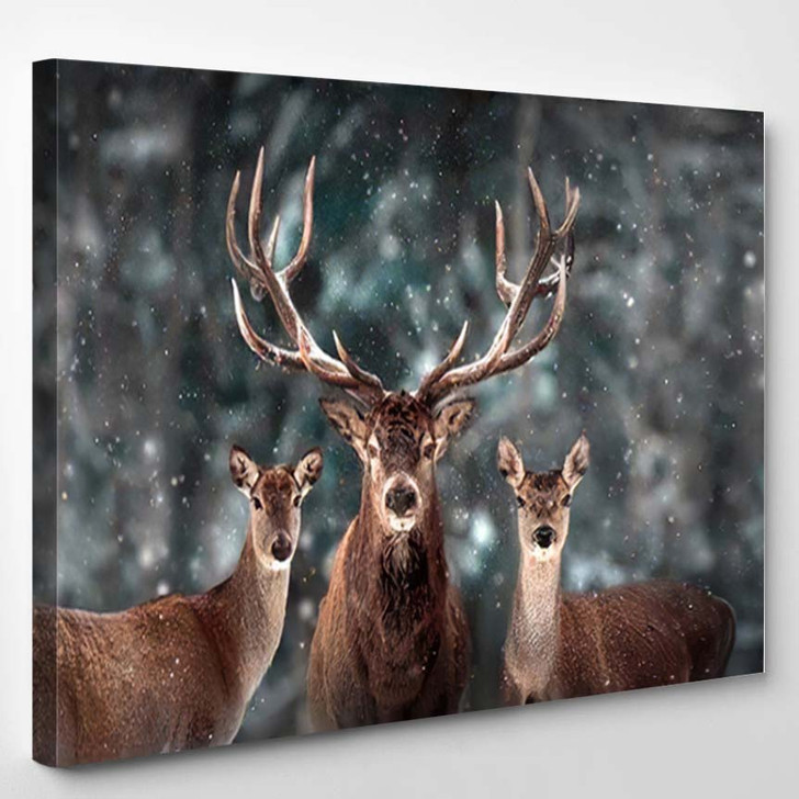 Noble Deer Family Winter Snow Forest - Deer Animals Canvas Wall Decor