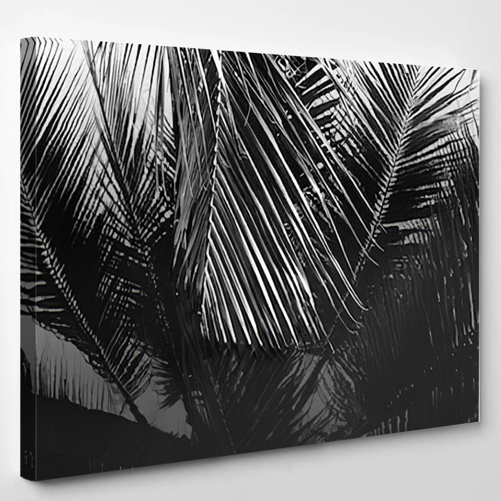 Coconut Leaves Abstract Reflection Black And White - Nature Canvas Wall Decor