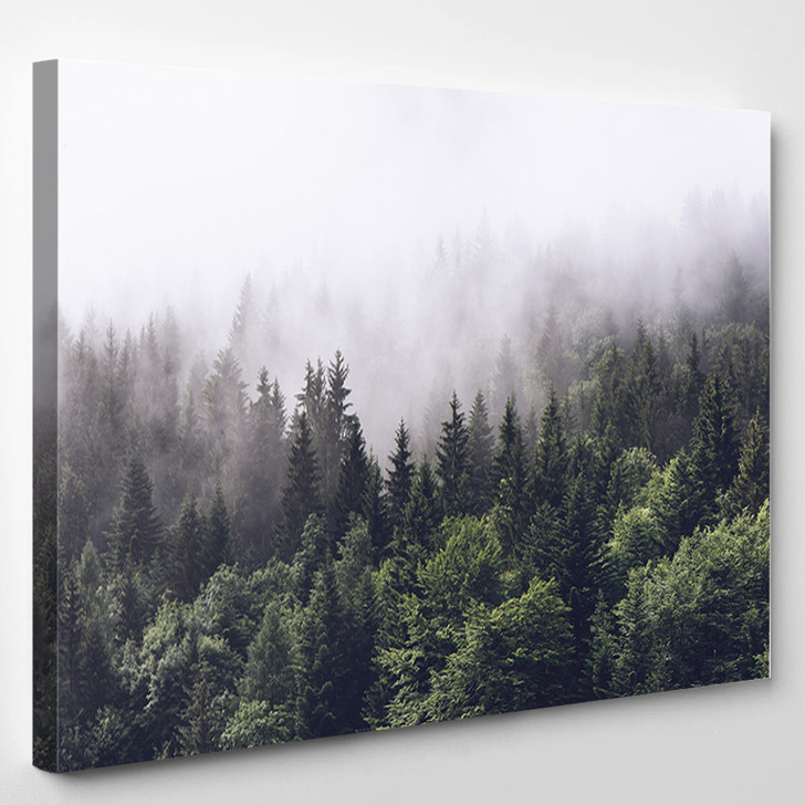 Forest - Nature Canvas Wall Decor