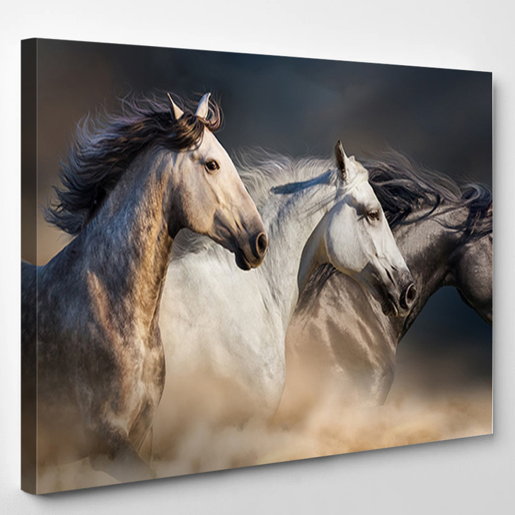 Horses With Long Mane Portrait Run Gallop In Desert Dust - Animals Canvas Wall Decor