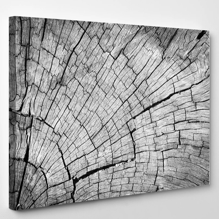 Old Gray Cracked Wood Texture Background - Abstrast Canvas Wall Decor