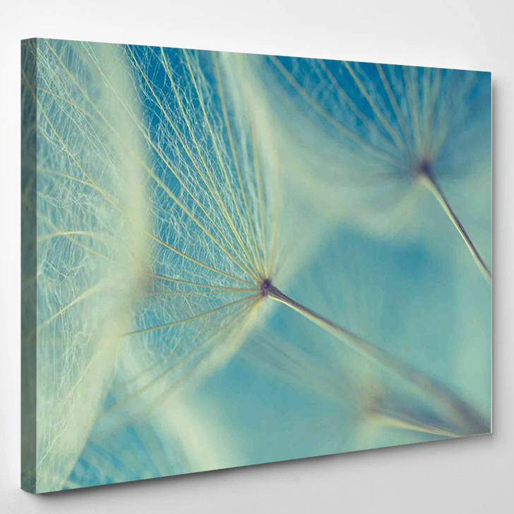 Abstract Dandelion Flower 2 - Nature Canvas Wall Decor