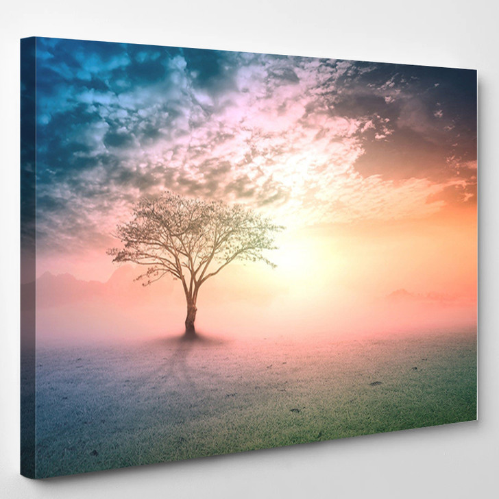 Alone Tree On Beautiful Meadow - Nature Canvas Wall Decor