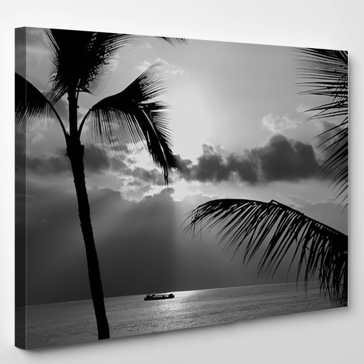 Kona Coast Party Boat Out For A Cruise In Black And White - Nature Canvas Wall Decor