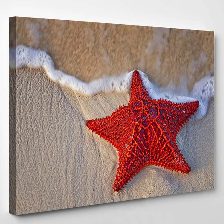 Bahama Starfish On The Beach With Incoming Waves From The Ocean - Nature Canvas Wall Decor