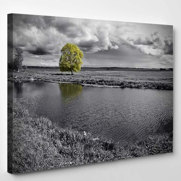 Black And White Landscape And Green Tree - Nature Canvas Wall Decor