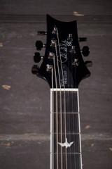 PRS SE Mark Holcomb SVN 7-String Electric Guitar