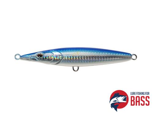 Xorus Asturie 130 Blue Chrome Belly