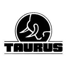 taurus3.png