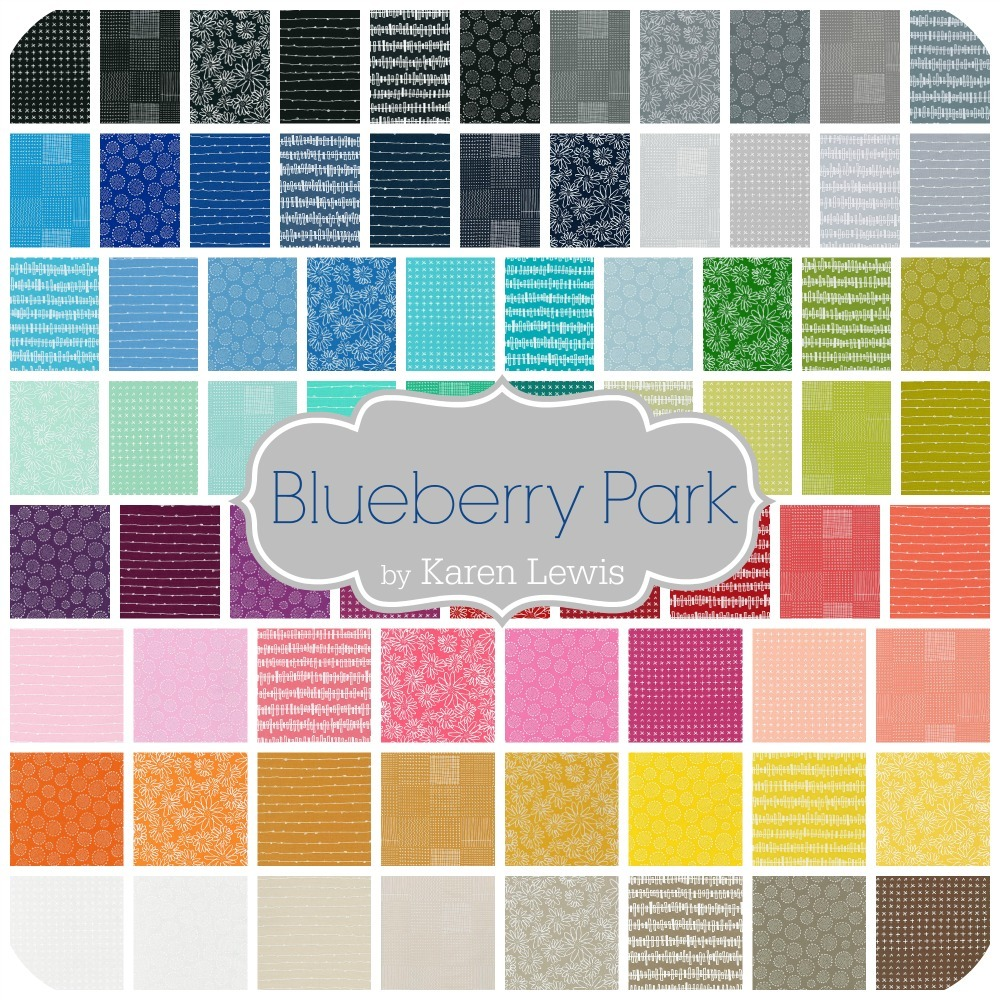 Blueberry Park by Karen Lewis