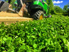 Mowing Real World Wildlife Clover & Chicory