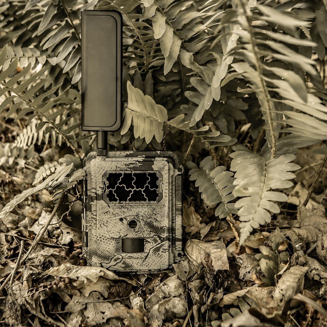 New Spartan Camera Camo