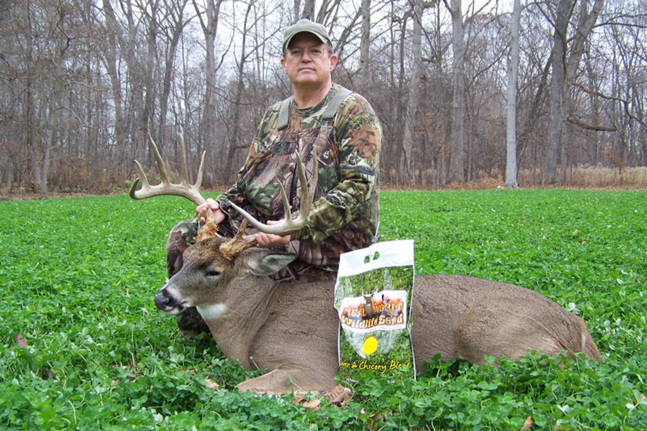 Real World Wildlife Products Clover & Chicory Food Plot