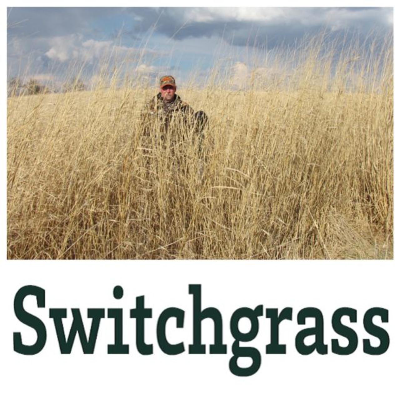 Real World Wildlife Switchgrass - 10 lbs