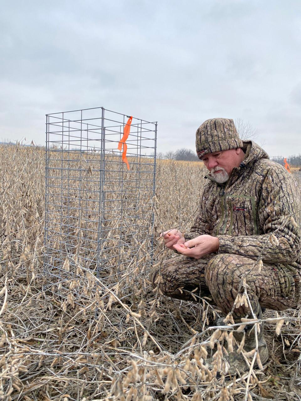 Real World Wildlife Enlist Soybean Seed