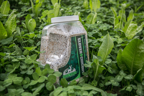 Real World Clover And Chicory Food Plot Blend