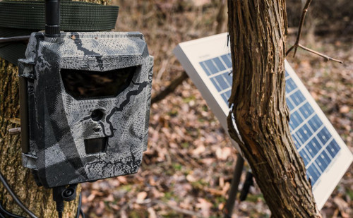 Spartan Ghost Camera Mounted to tree