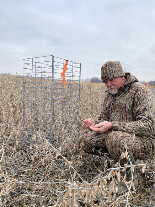 Real World Wildlife Enlist Soybean Seed