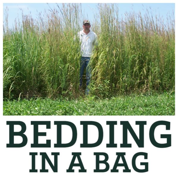 Real World Bedding In A Bag - Grasses For Deer