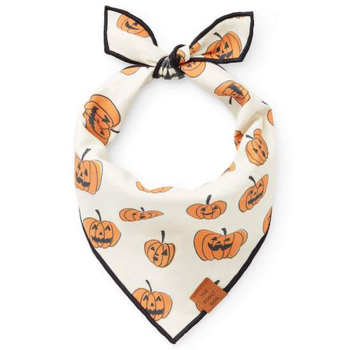 Pumpkin Patch Reversible Bandana