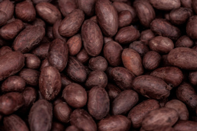 What to Use Cocoa Beans For, and Why?
