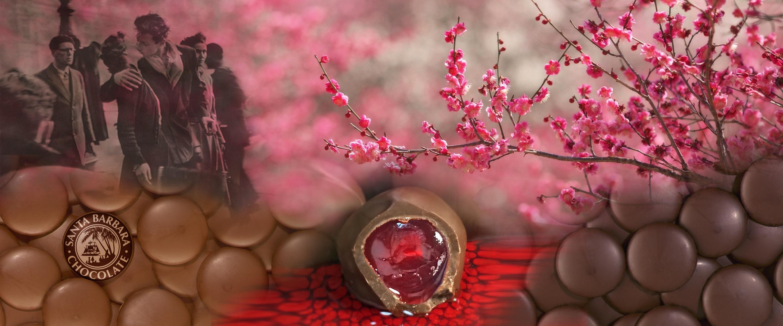 chocolate-covered-cherry-valentines-.jpg
