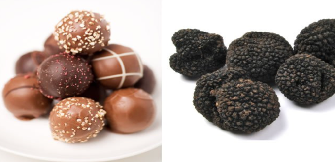 What Are Chocolate Truffles