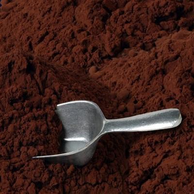 cocoapowder-32819.1366088344.1280.1280.jpg