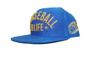 No Baseball No Life