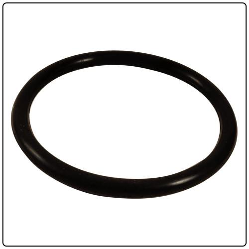 Fuel Pump O-ring