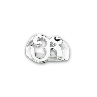 STAINLESS STEEL OM RING