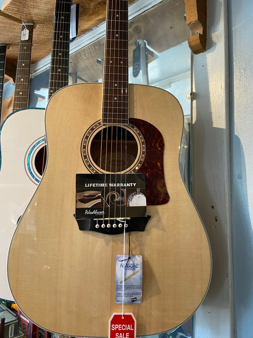 Washburn Heritage D10S Guitar