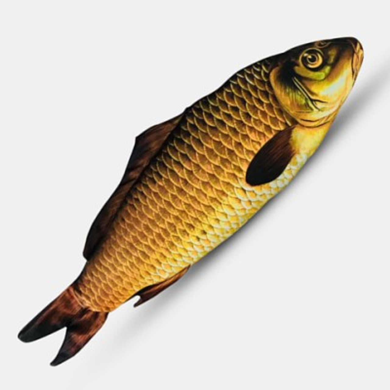 Instant Appearing Fish Magic Trick Gospel