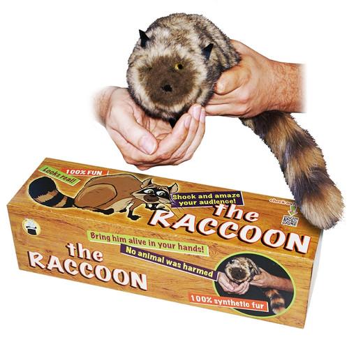 DiFatta Spring Raccoon Rocky Puppet Gospel Magic