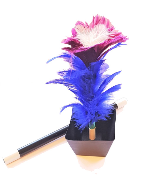 Appearing Flower From Wand Magic Trick Gospel