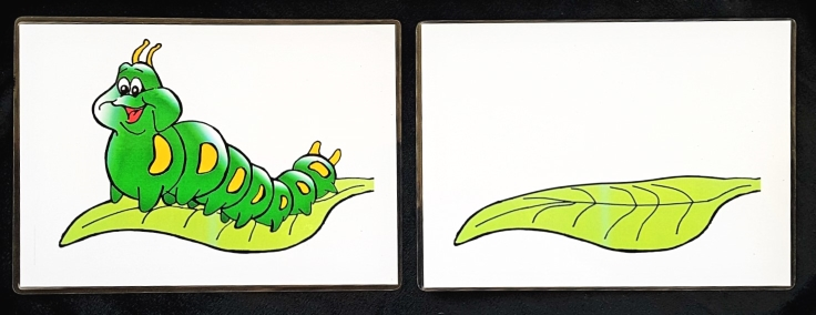 caterpillar-contents-cards-before-and-after-small.jpg