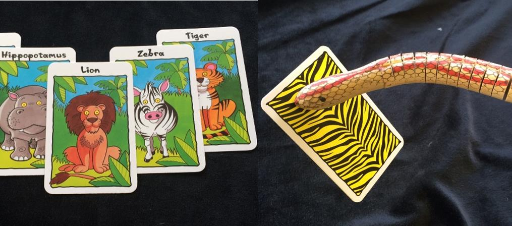 snake-with-card.jpg