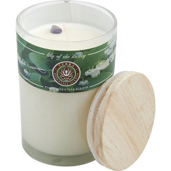 Lily of The Valley by Terra Essential Scents Soy Candle 12 oz Tumbler