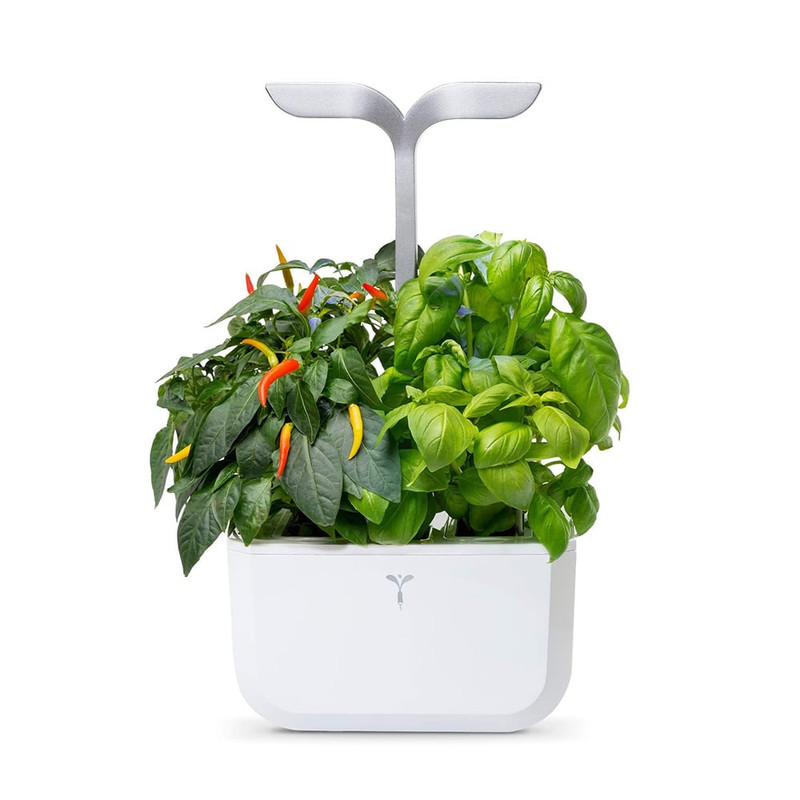 Veritable Exky Indoor Garden - Smart Edition in Arctic White