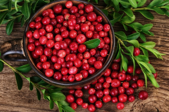 Fresh Cranberries for Thanksgiving and All Year Long