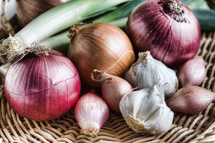 9 Types of Onions to Liven Up Your Dishes