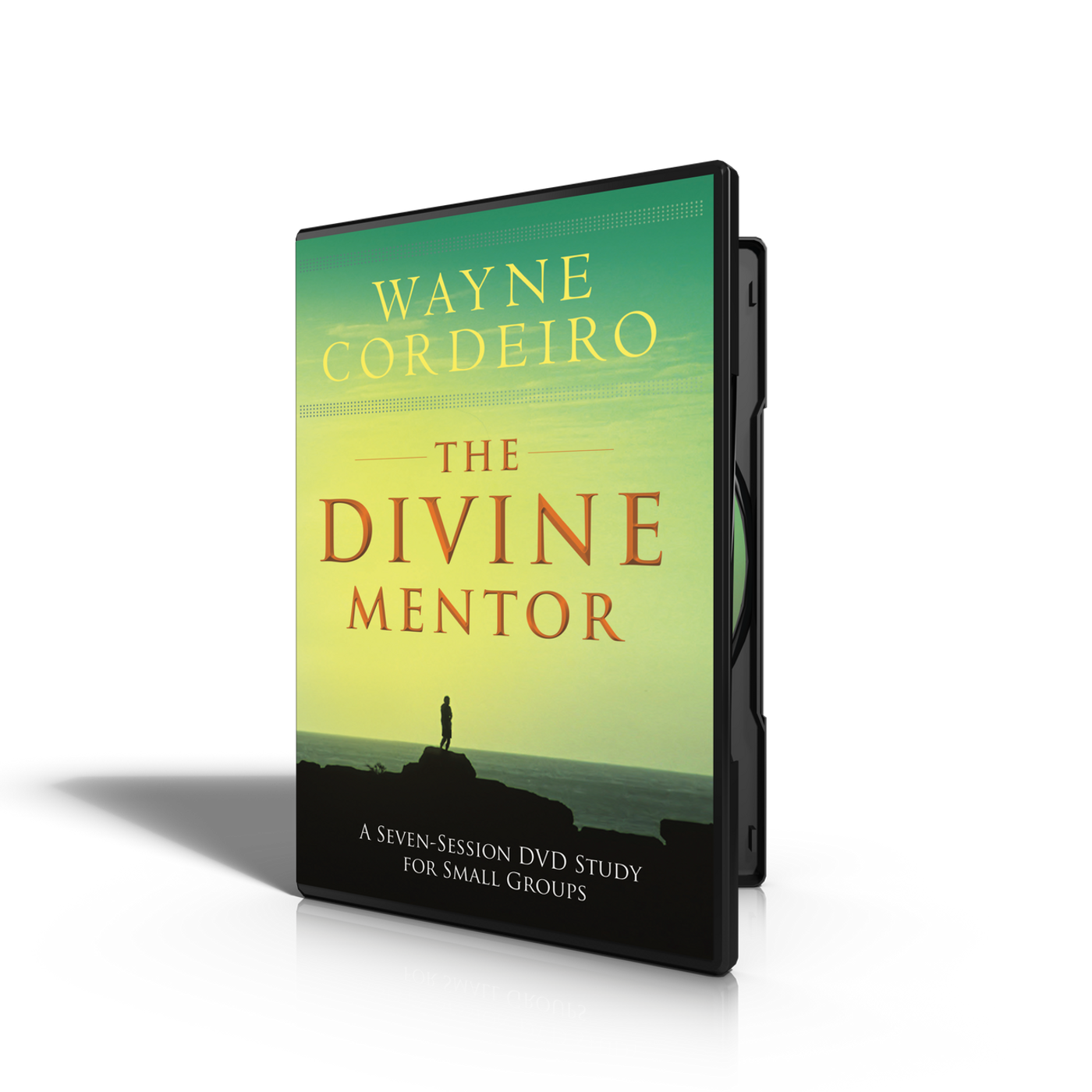 Divine Mentor - Small Group Study DVD