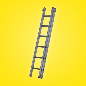 Youngman Extension Ladders