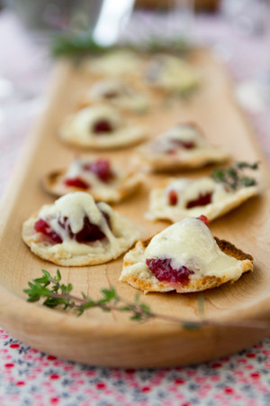 Cranberry Horseradish Cheddar Bites