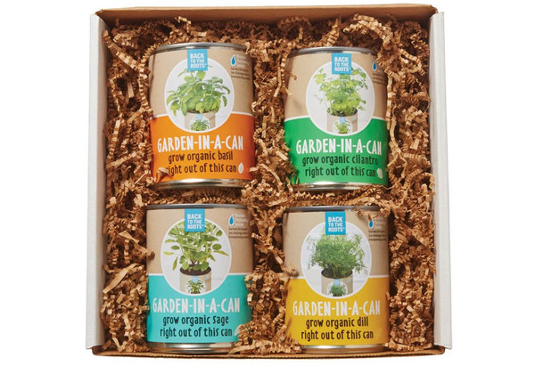 Garden in a Can Set (4-pack) - Basil, Cilantro, Sage & Dill