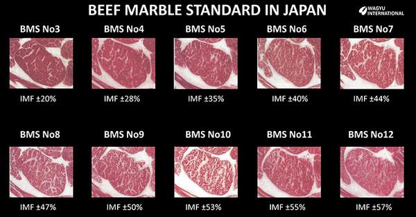 New Zealand Japanese 100% Grass Fed Wagyu Tenderloin - 5 lbs
